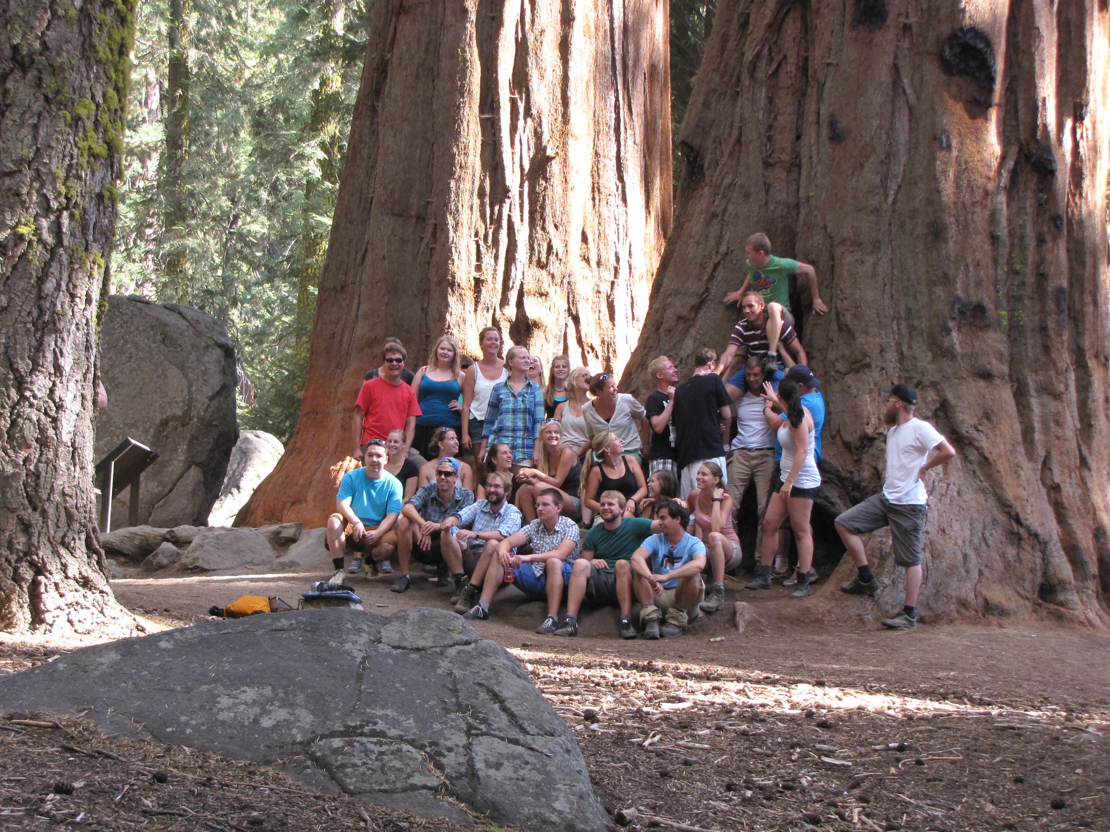 USA_20130931-99-SEQUOIA-NP-GIANT-SEQUOIA-STUDIS.jpg
