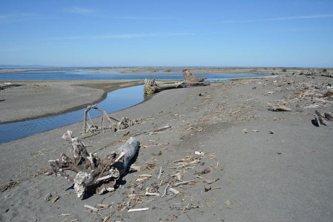 Abbildung 9: Delta des Elwha Rivers. Foto: Bohndiek 2016