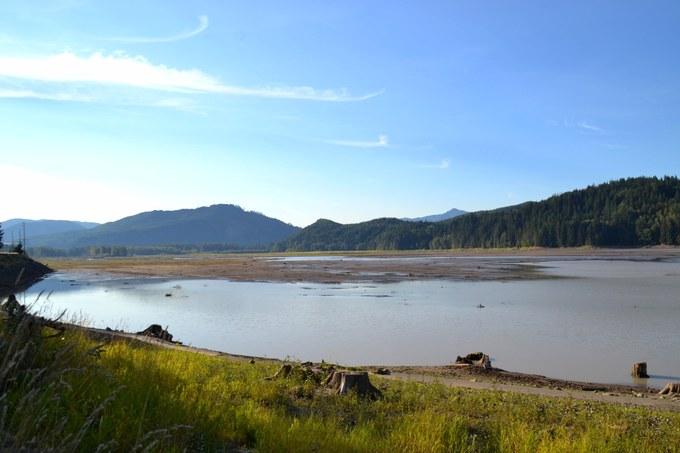 Abbildung 2: Der Alder Lake bei Niedrigwasserstand, im hinteren Bildbereich ist die Uferlinie zu erkennen, Baumstämme kennzeichnen ehemalige Uferlinie. Foto: Trampe 2016.