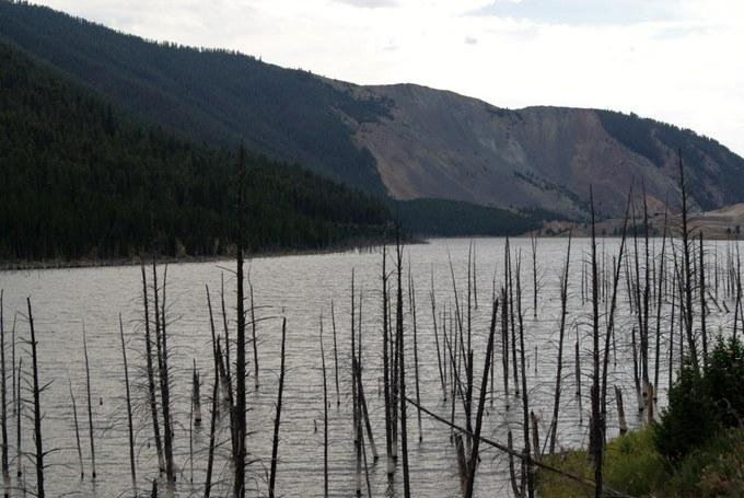 Abbildung 3: Erdrutsch und Earthquake Lake: Im Vordergrund sind die Baumskelette der ertrunkenden Bäume, die früher am Flußufer des Madison River standen, zu sehen. Quelle: Riegel 2016