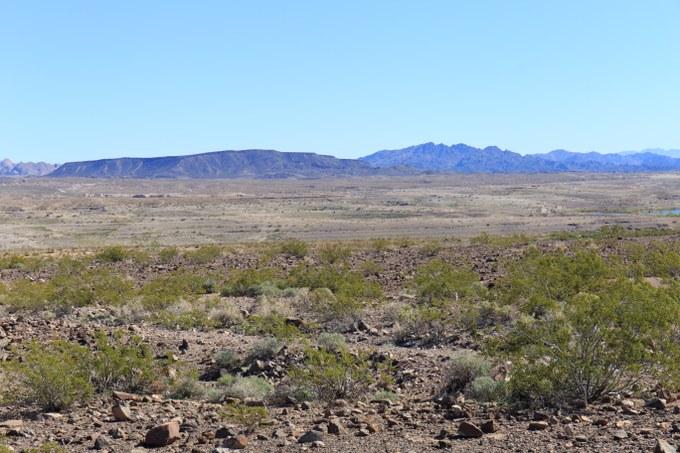 Abbildung 7: Landschaft in der unmittelbaren Umgebung des Lake Meads, mit der dominierenden Kreosotbusch-Gesellschaft. Quelle: Busche 2018.