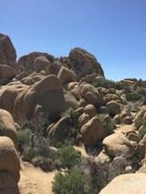 Abb. 12 Jumbo Rocks