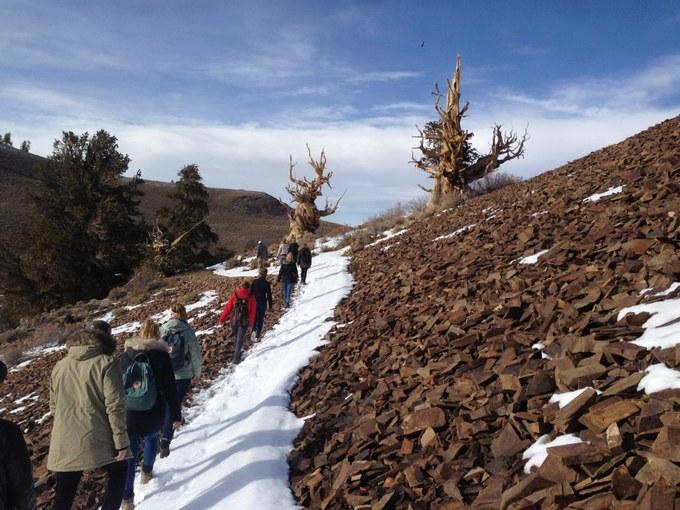 Abbildung 10: Die Studenten erkunden unter der Leitung des Guides den Discovery Trail. Quelle: Muffels 2018.