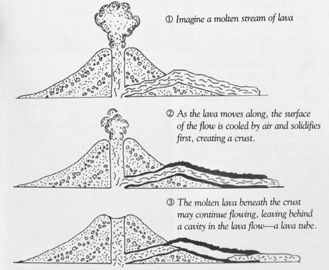 Abbildung 7: Entstehung einer Lavaröhre (FISCHER, Western National Parks Associa-tion 2015).