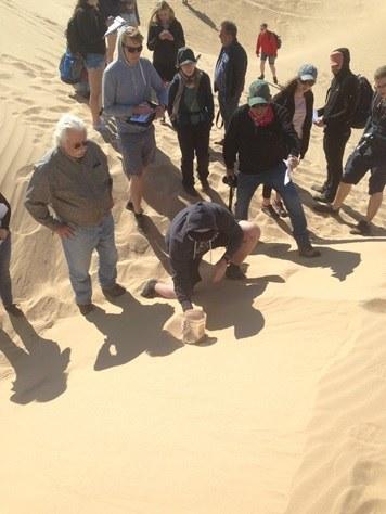 Abbildung 3: Exkursionsgruppe in den Algodones Dunes. Quelle: Mumm 2018