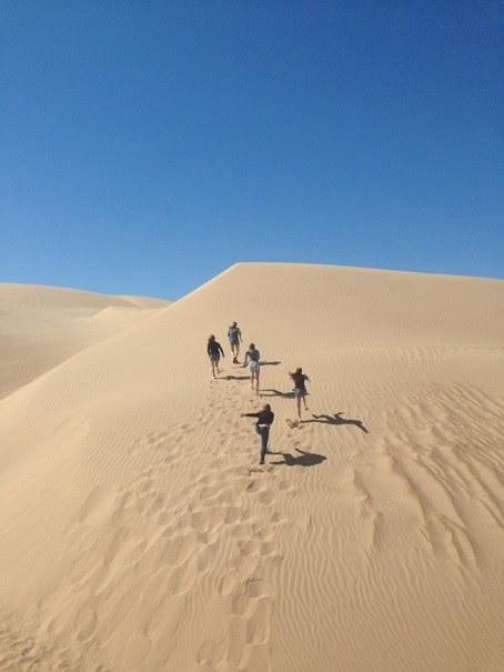 Abbildung 4: Wettrennen von Studierenden in den Algodones Dunes. Quelle: Mumm 2018
