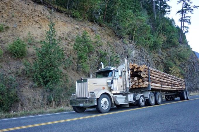 Abbildung 11: Truck beladen mit Douglasienstämmen auf dem Highway 101. Foto:  Voß 2016