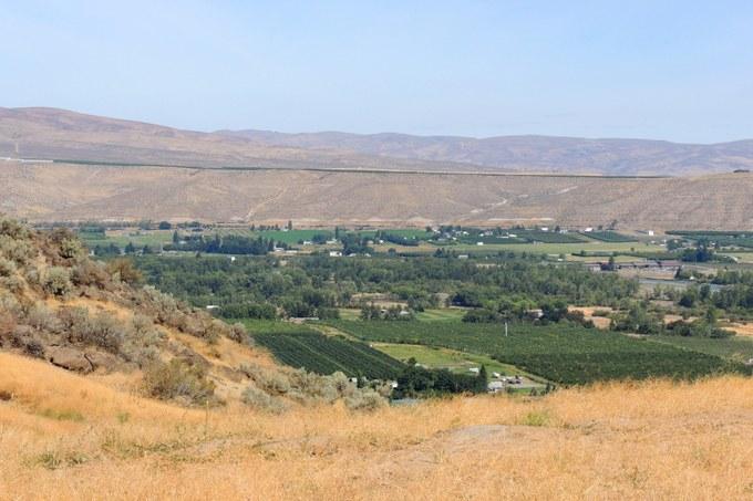 Abbildung 9: Bewässerungsflächen inmitten der Trockenlandschaft im Yakima Valley. Foto: Trampe 2016.