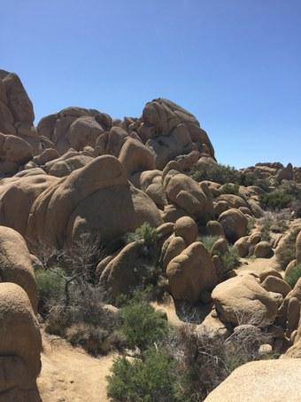 Abb. 12: Jumbo Rocks. Quelle: Lammers 2018.