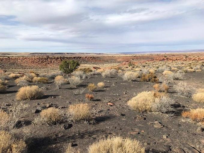 Abbildung 10: Aschebedeckter Boden des Wupatki-Gebiets (WOLTERS 2018).