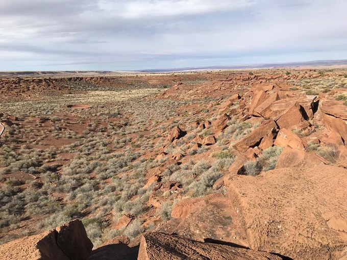 Abbildung 12: Rötliches Gestein der Moenkopi-Formation (WOLTERS 2018).