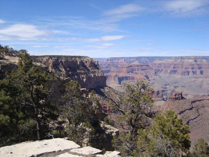 Abbildung 11: Pinyon-Kiefern und Ponderosa-Kiefern vor dem Panorama des Grand Canyons. Quelle: Walther 2018.