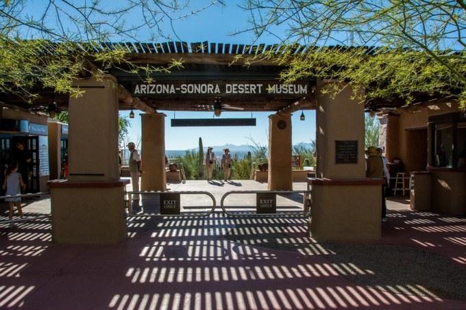 Abbildung 5: Eingang des Arizona Sonora Desert Museums. Quelle:  Grinstead 2016