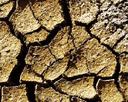 Desertifikation, Firmenportal Geohumus International GmbH